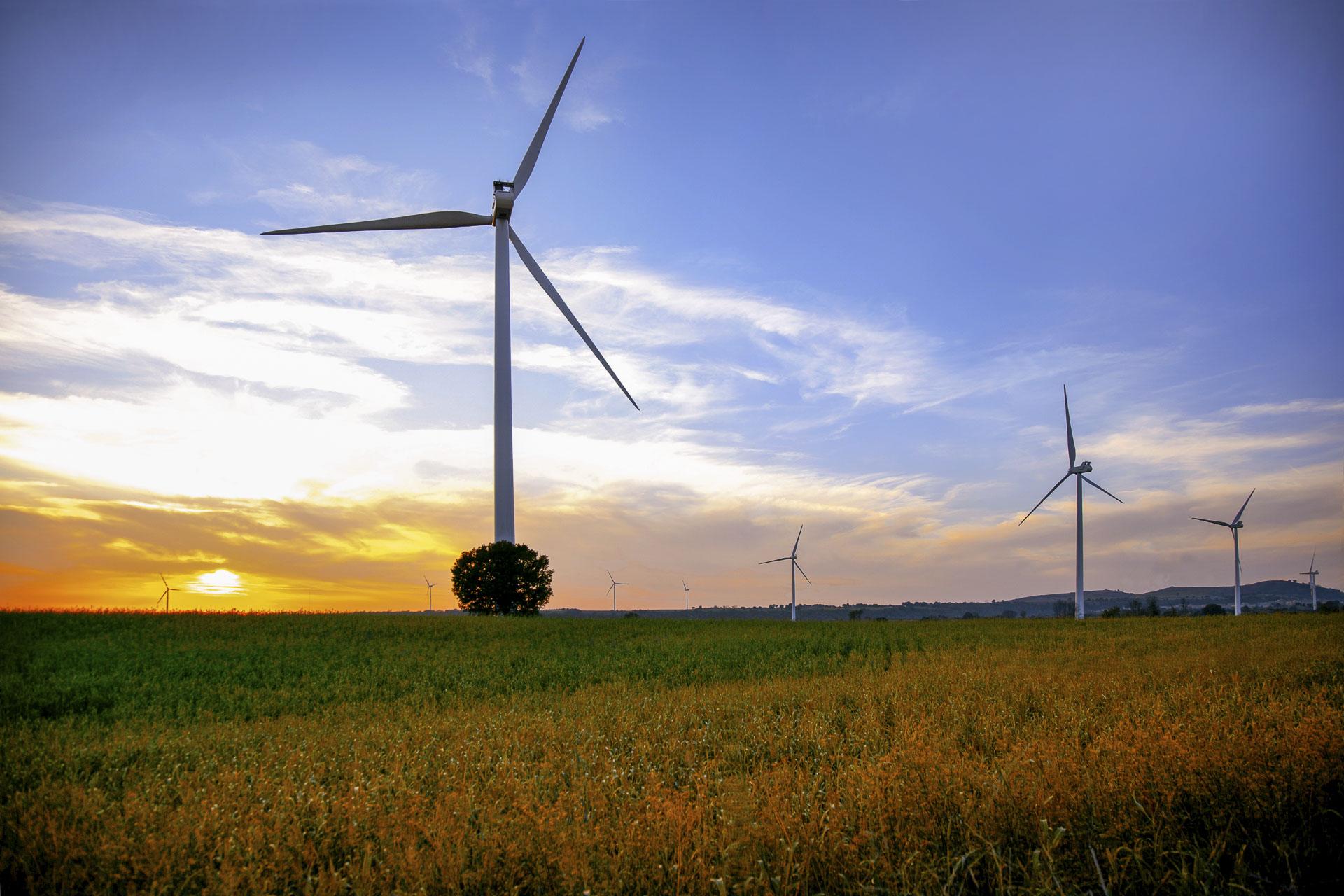 Parco produzione energia verde rinnovabile eolica Piansano